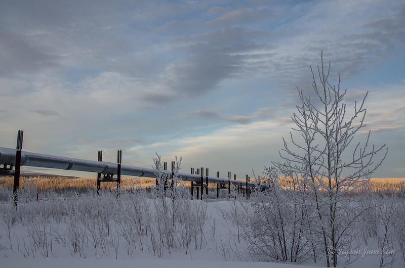 USA-Alaska-Arctic-Circle-2562.jpg