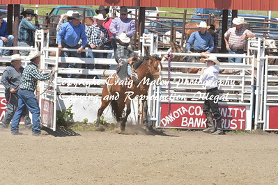 SADDLE BRONC PREF 6-19-2016