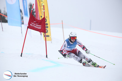 NK alpineskiën reuzenslalom 2017