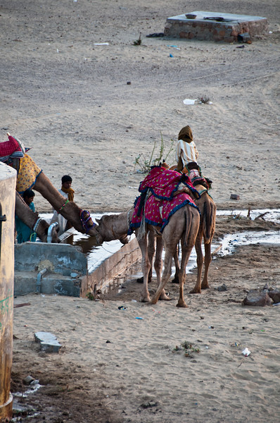 POW Day 5-_DSC3686- Jaisalmer.jpg