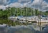 Marina- Alexandria on Potomac River