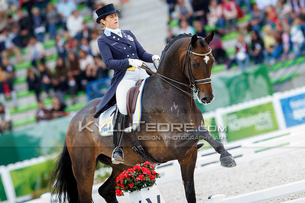 WEG Dressage moments