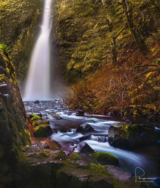 Horse Tail Falls, OR