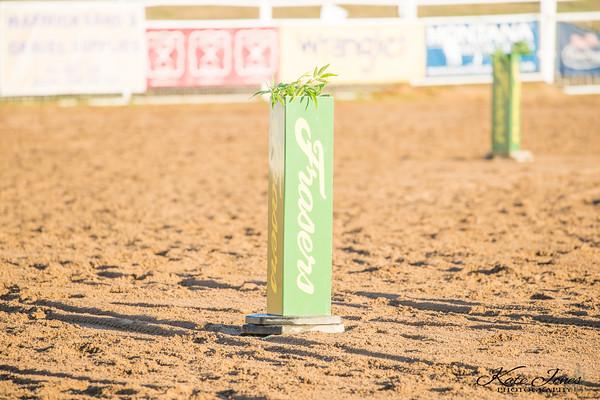 Stallions - R1 - Final - Presentations
