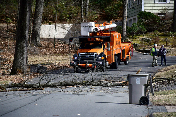 2/27/2020 Mike Orazzi | Staff The scene of down across Brewster Road in Bristol on Thursday afternoon.