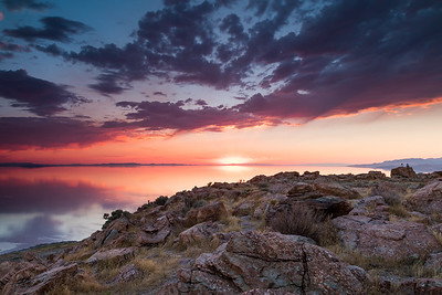 Buffalo Point Antelope Island Utah