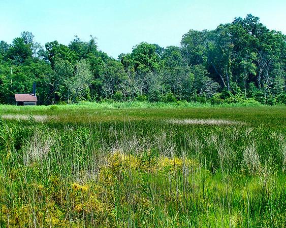 Eastern Neck <br>National Wildlife Refuge
