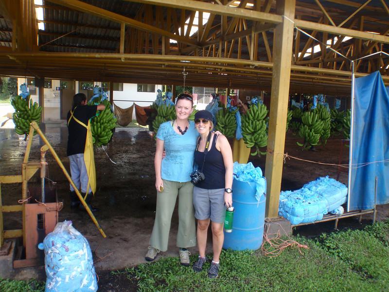 EARTH banana production.JPG