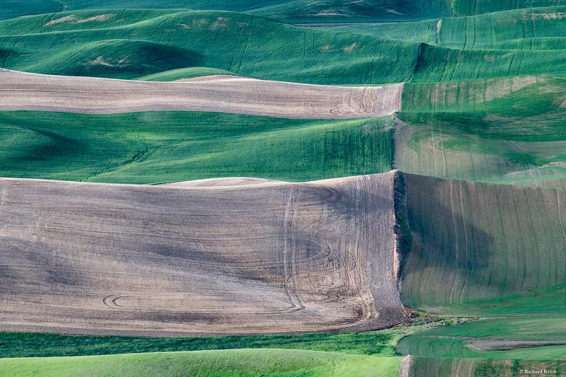 Steptoe Butte-4435.jpg