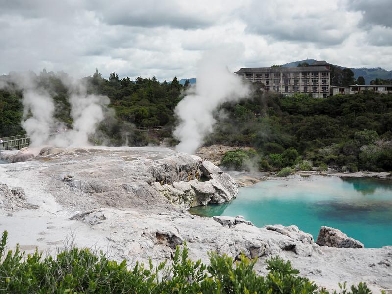 Te Puia geothermal valley in Rotorua
