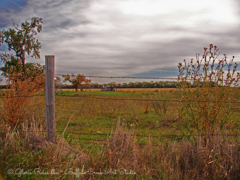 Fall Color and Fences
