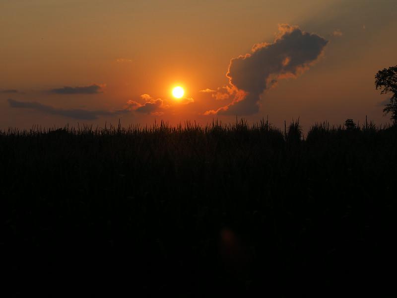 Clayton Park Sunset 3.jpg