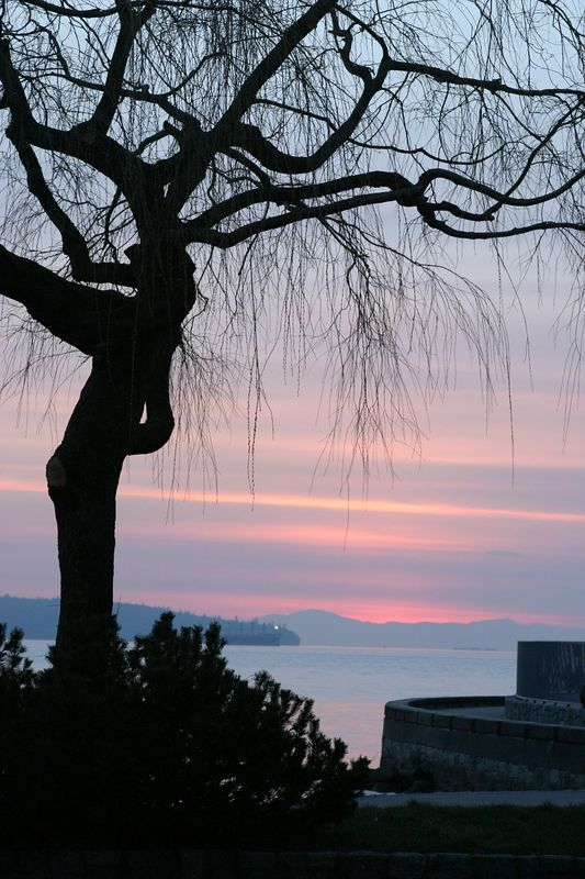 Vancouver - Feb 2005 098.JPG