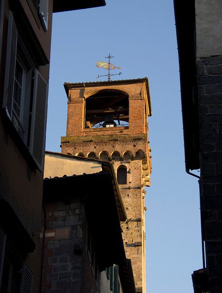 Lucca tower -12.jpg