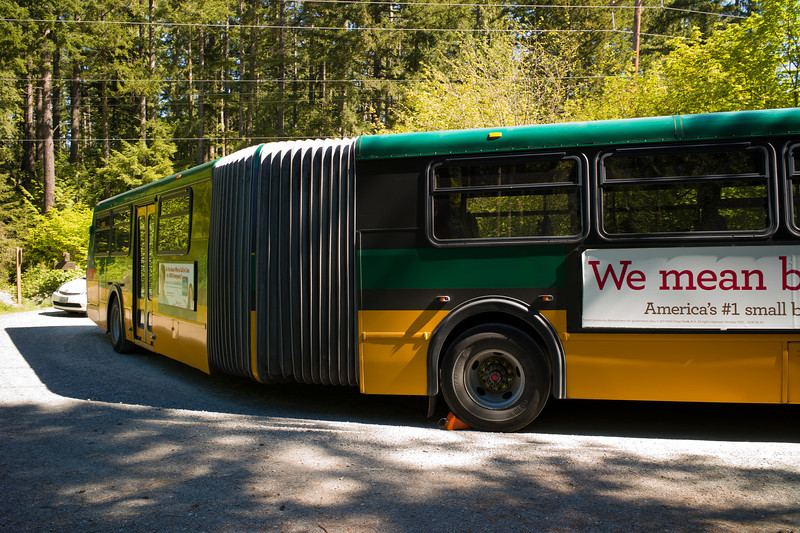 2011-05-20-Daily-Stuck-Bus