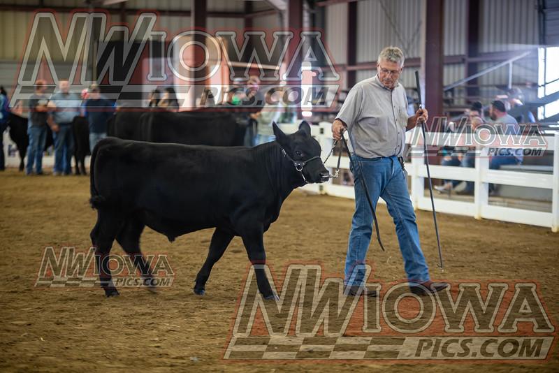 Clay County Fair - Day 8 - 9 - 18 - 21