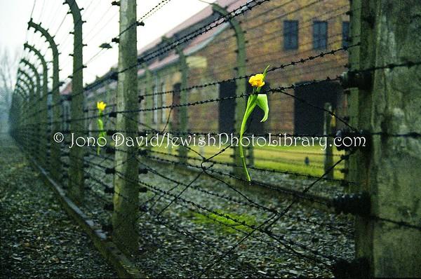 POLAND, Oswiecim (Auschwitz). Auschwitz. (2.1998)