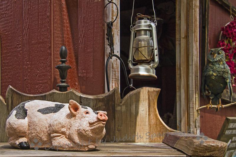 The Pig & the Owl - Judith Sparhawk