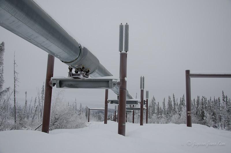 USA-Alaska-arctic-circle-2461.jpg
