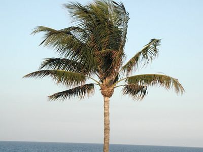 Florida - 2002