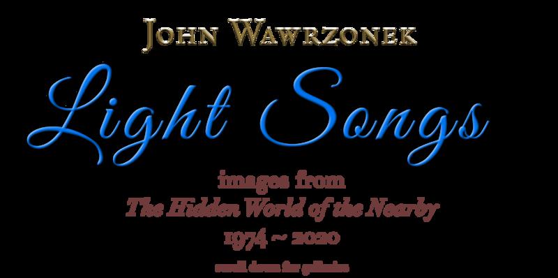 JOHN WAWRZONEK GOLD (1).png