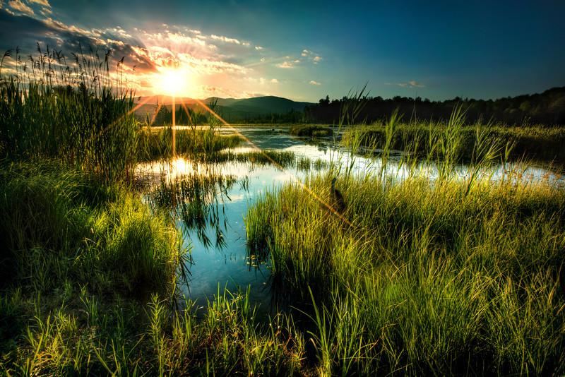 My Lake.jpg