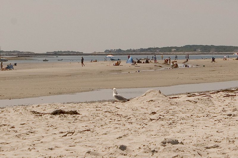 Goose Rock  Beach near Cape Porpoise