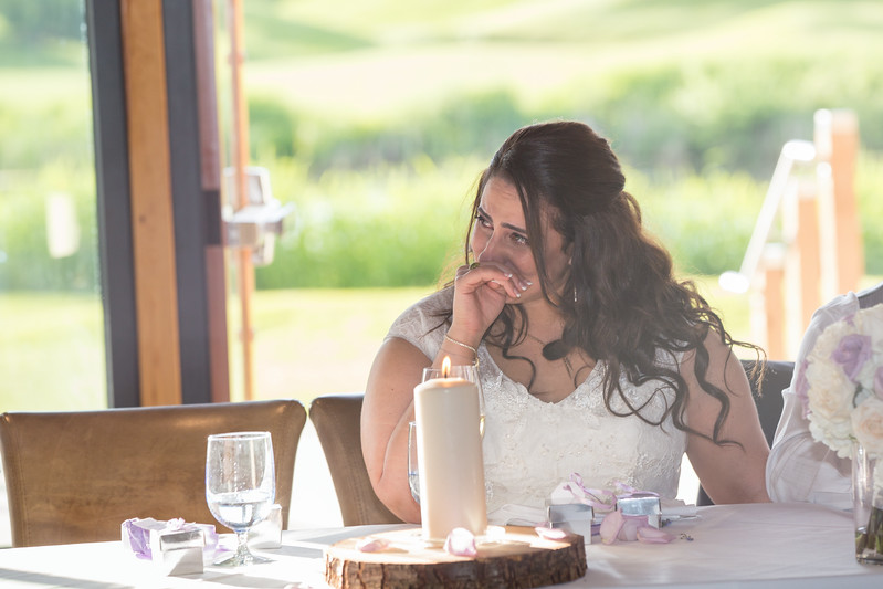 Houweling Wedding Engagement Photography BC-11.jpg