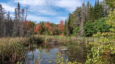 Bonnechere Provincial Park 2019