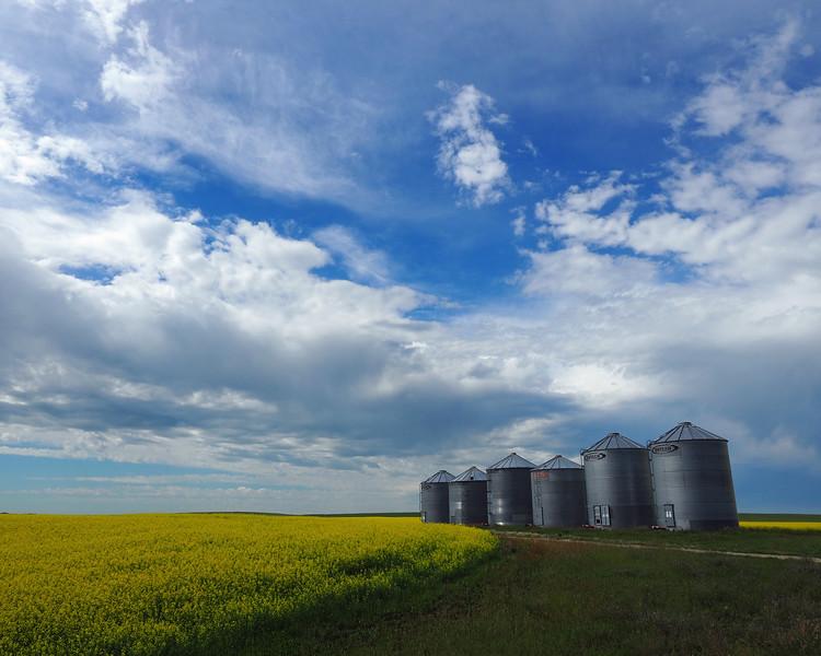 Alberta 17.jpg