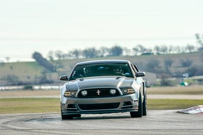 Gray Mustang