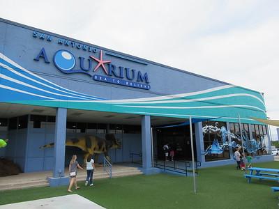 San Antonio Aquarium 09-2018