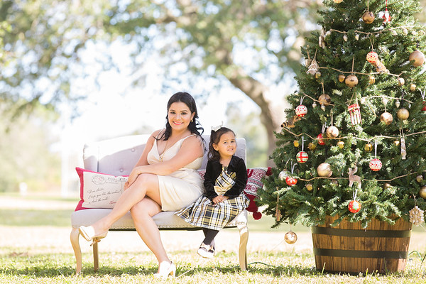 Christmas Minis 2017 - Margie Valle