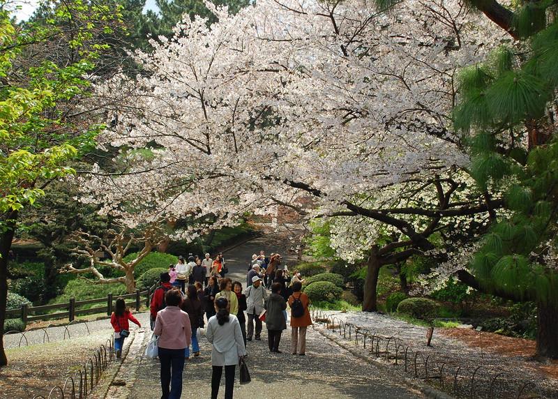14-Japan07_1457.JPG