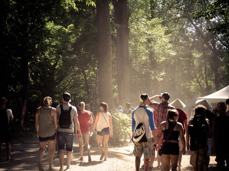 Osheaga forest.jpg