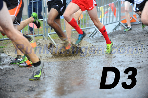 Miscellaneous Photos (All Divisions) - 2018 MHSAA LP XC Finals