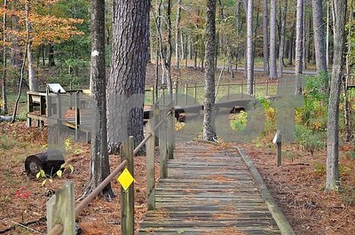 events-set-for-davy-crockett-national-forest