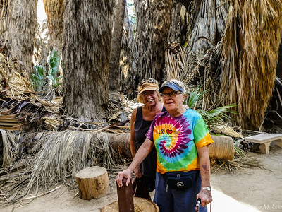 02-05-2018 Visiting 1000 Palms with Judy