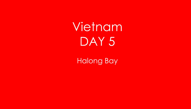 Viet Day 5 copy.jpg