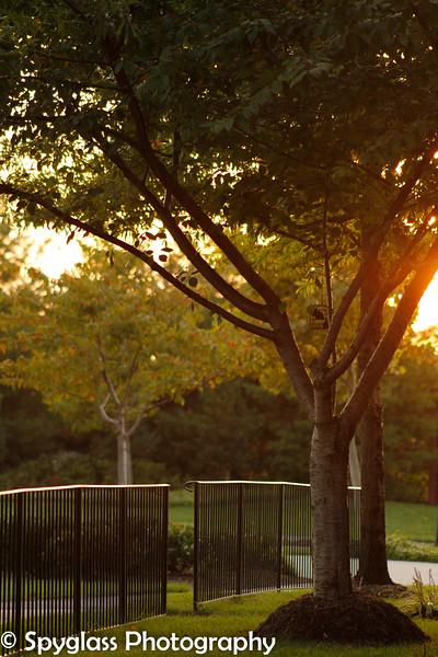 Potomac Sunset.jpg