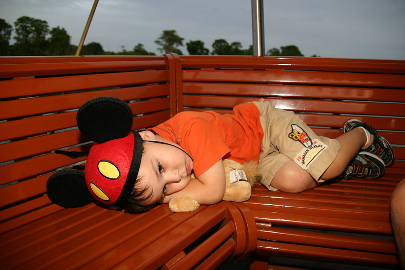 Disney 2008 011.jpg