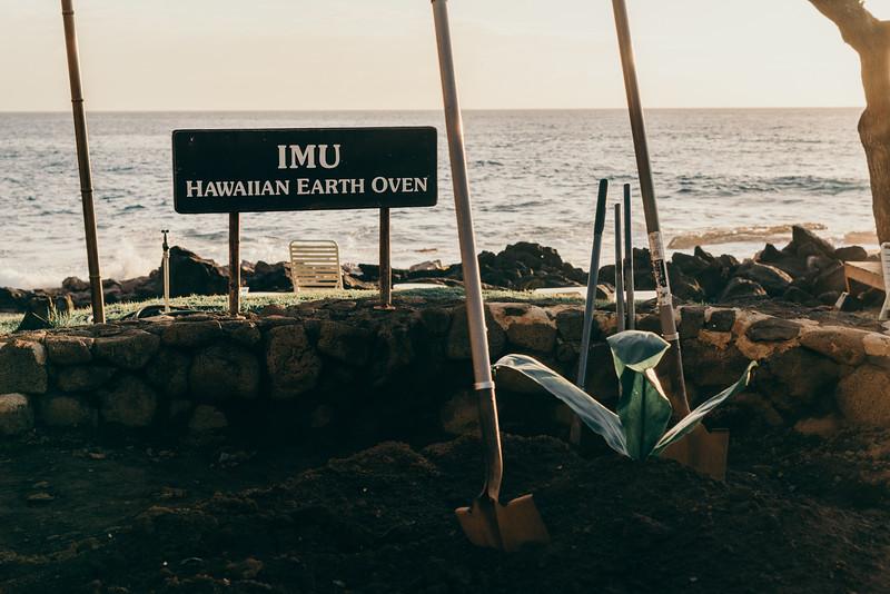 Hawaii20-490.jpg
