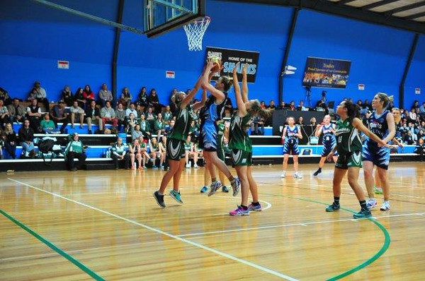 Bankstown Bruins vs Newcastle Hunters - Women's SF