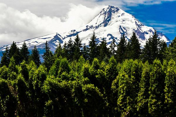 A Final Look At Beautiful Mount Hood