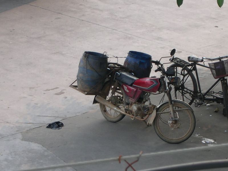 Bongo player or heavy drinker.....you decide.