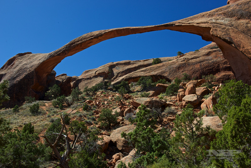 Arches National Park, UT,-