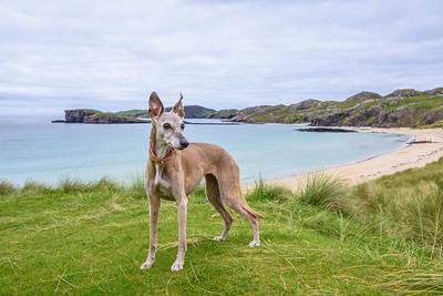 Scotland Day 6: Old Shoremore Beach