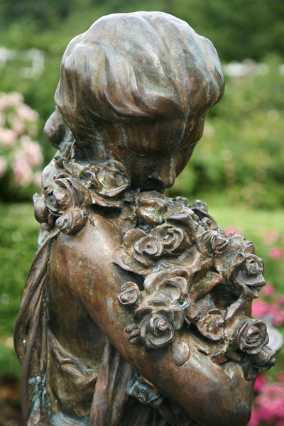 Bronze Roses