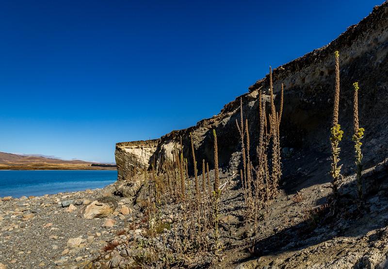 Weisse Felsen am «Lake Tekapo»