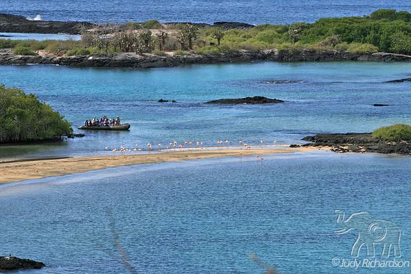 Floreana Island~Baroness Lookout